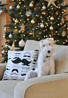 Super Mustache Pillow Cover {Easy Sew Envelope Pillow} — Decor and the Dog