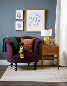 To help refresh your home for the season ahead, we talked to a few designers about the fall decorating trends they're most excited about this year. #fallhomedecor #falldecortrends #2021trends #bhg Fall Home Decor, Autumn Home, Black Succulents, Pumpkin Show, Home Decor Trends, Decor Ideas, Velvet Pumpkins, Barbie Dream House, Entryway Furniture