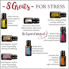 The 8 Great Essential Oils for Stress – Stephanie Fritz - Holistic Health Stress Relief Essential Oils, Essential Oils For Anxiety, Essential Oils Guide, Essential Oil Uses, Oils For Anxiety Doterra, Mixing Essential Oils, Calming Essential Oils, Elixir Floral, Essential Oil Diffuser Blends