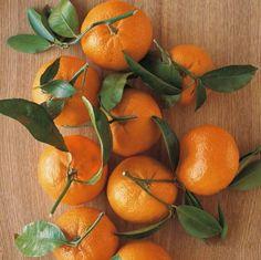 5 Refreshing Ways to Eat More #Oranges
