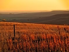 The rolling hills of Kansas