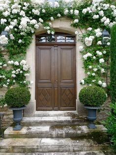 Climbing roses surround the front door, Via Cote de Texas. Dream Garden, Home And Garden, Garden Modern, Moon Garden, Garden Cottage, The Doors, Front Doors, Front Entry, Front Porch