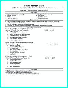 Insurance Claims Adjuster Resume Template Independent Insurance Agent Resume  Sample Dimpack Com