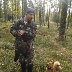 Metso ja koira