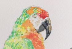 Parrot ORIGINAL Miniature Watercolour ACEO Wildlife Bird view here: https://www.etsy.com/uk/listing/574201998/parrot-original-miniature-watercolour?ref=shop_home_active_1