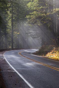 A estrada Terra leva a Selva Tijuca, onde estará a Aldeia Futura, interseção c/a Terra