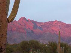 Sunset in #Tucson