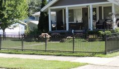 Picket spacing is 1 so that smaller dog breeds cannot fit through the spacing. Small Dog Breeds, Small Dogs, Third Rail, Aluminum Fence, Yard Ideas, Michigan, Deck, Outdoor Decor, Fit