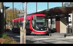 Get To Know The New Light Rail System In The Capital Of Australia - Distrita Eurovision France, The Voice Winners, Ukraine, Sweden, Newcastle Beach, Light Rail Station, Moore Park, Buses And Trains, Trains