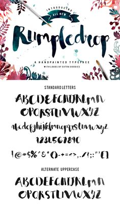 Rumpledrop typeface is a hand painted brush script with irregular baseline and a massive pack of handpainted watercolor + illustrations!