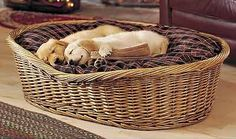wicker dog bed 17