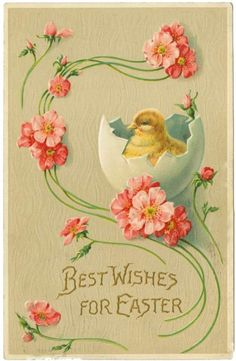 Pink Phlox with Buttercup Yellow Baby Chick in Broken Egg Shell EASTER Greeting Vintage Postcard Easter Greeting Cards, Vintage Greeting Cards, Vintage Postcards, Vintage Images, Easter Art, Easter Crafts, Easter Eggs, Easter Parade, Holiday Postcards