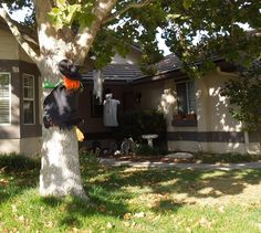 How Does Your Household Handle Halloween? - Persona Paper