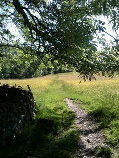 Dales Way near Staveley