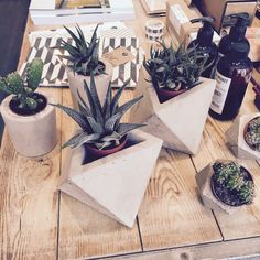 Concrete Planters available at Housekeeping Store.