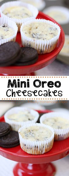 Mini Oreo Cheesecakes are the perfect bite sized dessert! With chopped Oreos in the batter and a whole Oreo at the bottom of each mini cheesecake, these are irresistible! bites easy bites keto bites mini bites no bake bites no bake easy bites recipes Oreo Cheesecake Cupcakes, Oreo Cheesecake Recipes, Dessert Recipes, Oreo Recipe, Party Recipes, Mini Cheesecake Bites, Mini Cheesecakes, Bite Size Desserts, Mini Foods