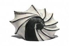 Resultado de imagem para sculptures coquillages