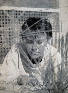 Harper Lee, Treasured Author of To Kill a Mockingbird, Has Died
