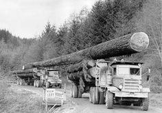 Logging Trucks Semi Trucks, Big Trucks, Cool Trucks, Pickup Trucks, Camping Car, Custom Trucks, Logging Equipment, Heavy Equipment, Lumberjacks