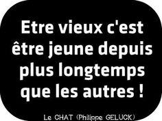 Philippe Gelluck -  le chat