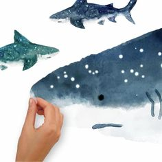 Shark Nursery, Shark Room, Animal Nursery, Ocean Themed Nursery, Underwater Bedroom, Ocean Bedroom, Kids Bedroom, Shark Bathroom, Surfer Room