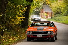 Dodge Challenger 72-74 if I have to settle for the later years do this exact paint scheme