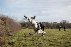 A member of the Old Surrey Burstow and West Kent Hunt crashes as she jumps a fence during the annual Boxing Day hunt in Chiddingstone, Britain. REUTERS/Simon Dawson