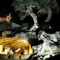 05 gen.Terzo appuntamento con l'edizione 2013 del Presepe Vivente di Polignano a Mare, anche quest'anno riproposto nel complesso delle grotte ipogee della Masseria Madonna di Grottole sita in agro polignanese. Location:Località Grottole
