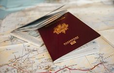 Apply For Passport Online, we provide all types of legal documents. Travel Agency Website, Chile, Passport Online, Real Id, Business Visa, Best Snorkeling, Passport Wallet, Passport Travel, Tour Operator