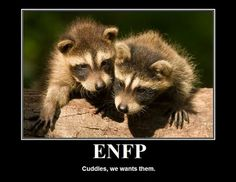 infp enfp love match Extraversion and introversion an extravert and introvert may have some issues with one wanting the other to open up more, and one wanting the other wanting the other to give them some time alone.