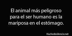 #dia a día, el animal más peligroso para el ser humano es...