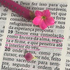 """DiarioComDeusOficial on Instagram: """"🌸 Hebreus 6.19 🌸 ______________________ A ESPERANÇA é uma âncora firme para a alma. Nossa vida só permanece em paz nas tempestades quando…"""""""