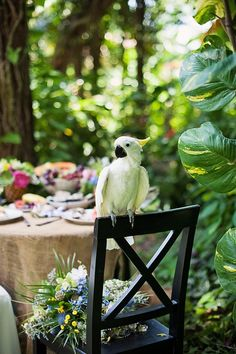 tropical wedding inspirational photo shoot - L&L Photography - island parrot