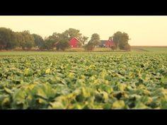 Farm Fresh Nutrition: Preserving Fruits & Vegetables After Harvest - YouTube