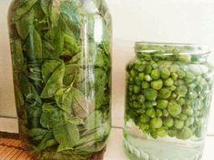 Greek Recipes, Pickles, Cucumber, Mason Jars, Food, Essen, Greek Food Recipes, Mason Jar, Meals
