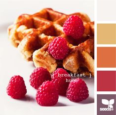 breakfast hues from Design Seeds.  Perfect for the modern couple and for a Fall wedding!