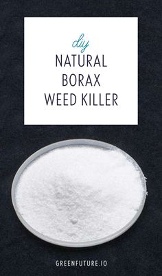 Gardening tip! To make an all natural weed killer from Borax: Dissolve 10oz of Borax in 4oz of warm water. Then add that solution to 2.5 gallons of water. Pour into a spray bottle, and you'll have enough to kill 1,000 square feet of weeds!