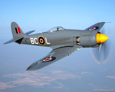 Hawker Sea Fury Ww2 Aircraft, Fighter Aircraft, Military Aircraft, Fighter Jets, Aircraft Photos, The Spitfires, Ww2 Planes, Aviation Art, Airplanes