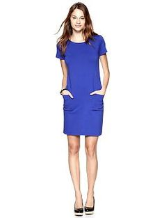Knit Pocket Shift (Becca Blue). Gap. $59.95