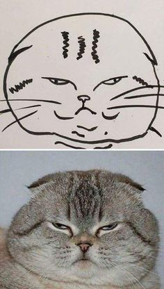 """My teacher say's I can't draw cats..."" - Album on Imgur"