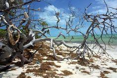 Bahia Honda National Park, Keys