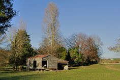 farm sheds nz - Google Search