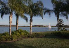 intl-forum-scc-header Sun City Center, Header, Community, Activities, Beach, Outdoor, Outdoors, The Beach, Beaches