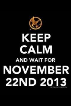 Catching Fire....the wait is gonna kill me :\