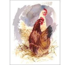 Watercolor Hens - Original Painting 8 x 10 inches Farm Birds
