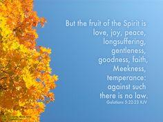 Fruit Of The Spirit by LoganWeileriii, via Flickr
