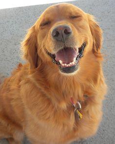 Looks like my girl when she smiles!!!