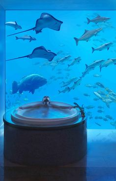 Underwater spa day - Underwater Hotel in Dubai