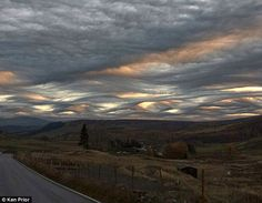 Every cloud: The Cloud Appreciation Society is lobbying for the undulatus asperatus or agitated wave, seen just above the horizon in this picture, to be added to the International Cloud Atlas