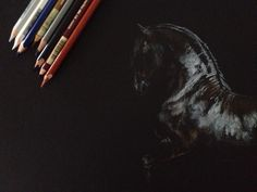 Sketch by Tony O'Connor Equine Art www.whitetreestudio.ie
